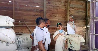 Produksi padi di Paser belum banyak diminati masyarakat