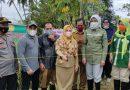 Farm Field Day Suatang Keteban, Tingkatkan Wawasan Petani Paser